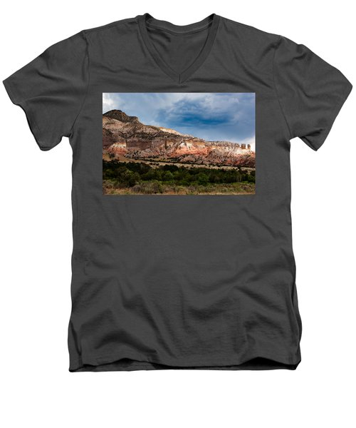 Nature's Paintbrush Men's V-Neck T-Shirt