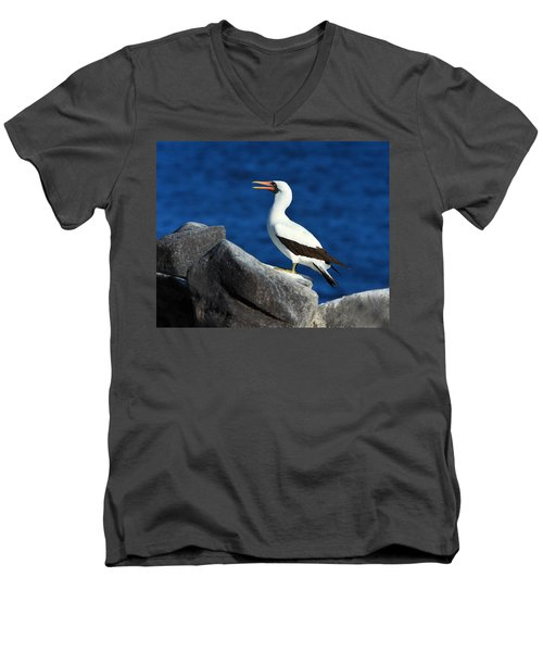 Nazca Booby Men's V-Neck T-Shirt by Tony Beck