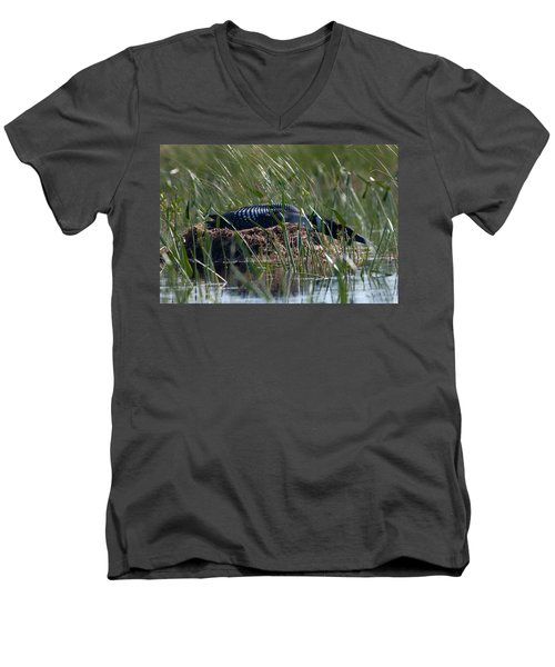 Nesting Loon Men's V-Neck T-Shirt by Brent L Ander