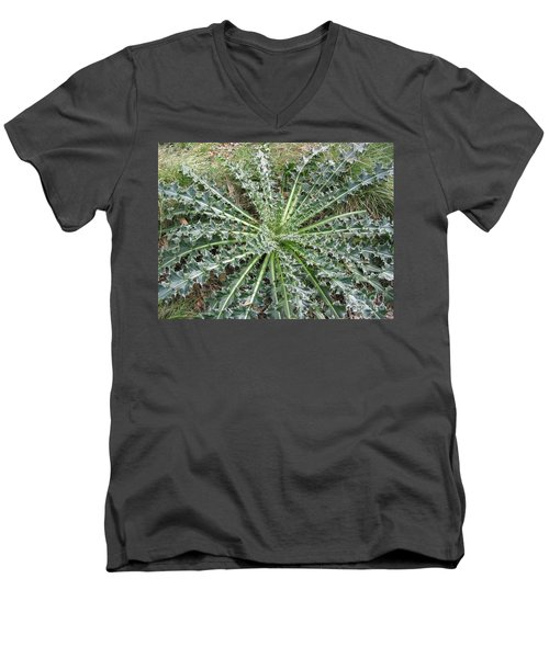 October Thistle Men's V-Neck T-Shirt
