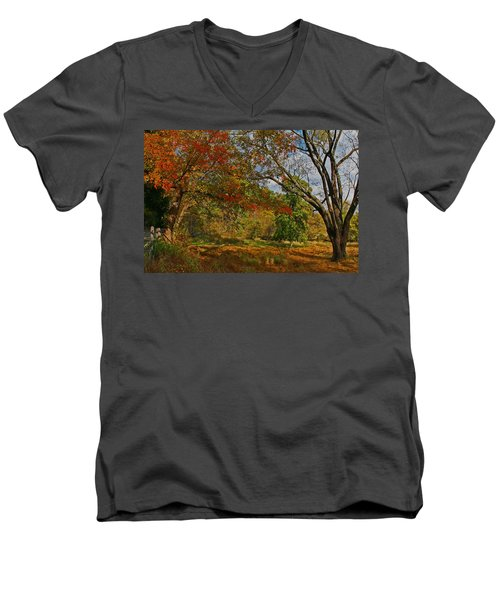Old Tree And Foliage Men's V-Neck T-Shirt