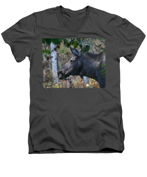 Men's V-Neck T-Shirt featuring the photograph On Alert by Doug Lloyd