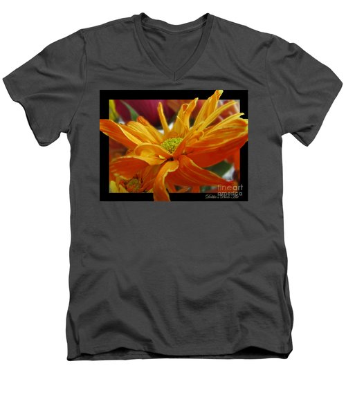 Men's V-Neck T-Shirt featuring the photograph Orange Juice Daisy by Debbie Portwood