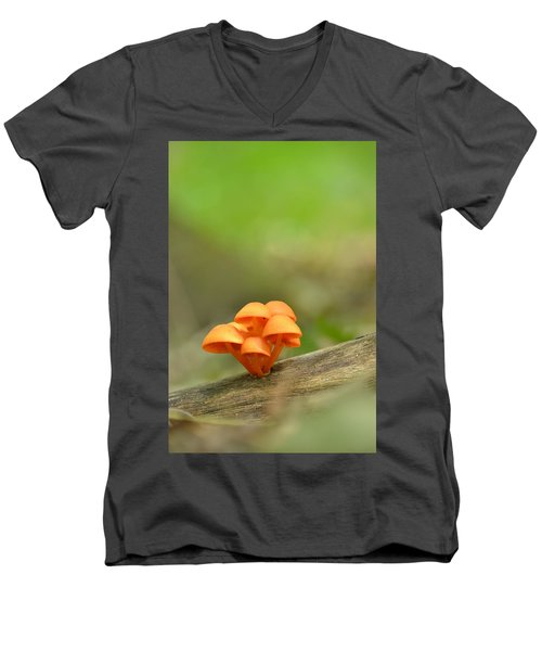 Men's V-Neck T-Shirt featuring the photograph Orange Mushrooms by JD Grimes