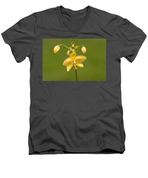 Orchid Number 1 Men's V-Neck T-Shirt by Rich Franco
