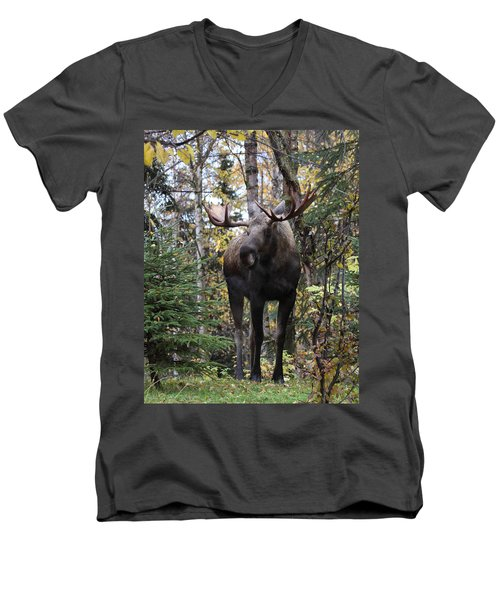 Out In The Open Men's V-Neck T-Shirt