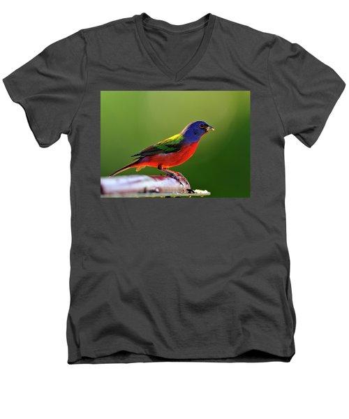 Painting Color Men's V-Neck T-Shirt