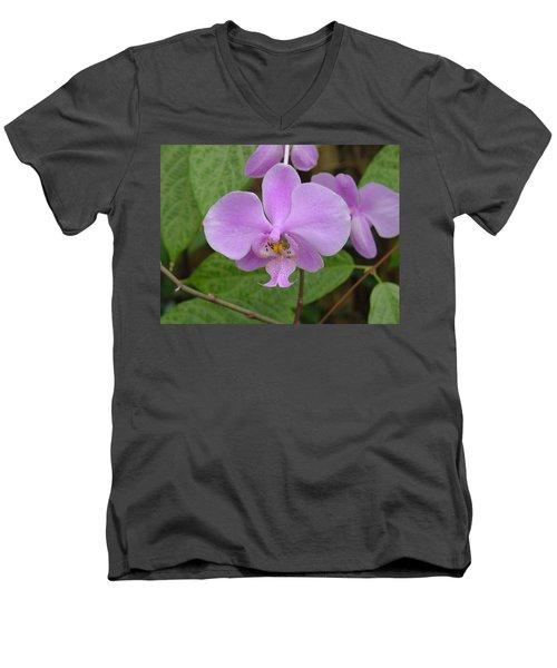 Pale Pink Orchid Men's V-Neck T-Shirt