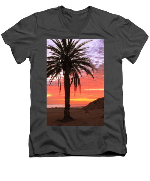 Palm Tree And Dawn Sky Men's V-Neck T-Shirt by Roupen  Baker