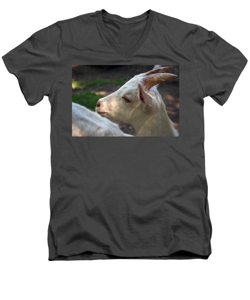 Men's V-Neck T-Shirt featuring the photograph Patience Is A Virtue by Kay Novy