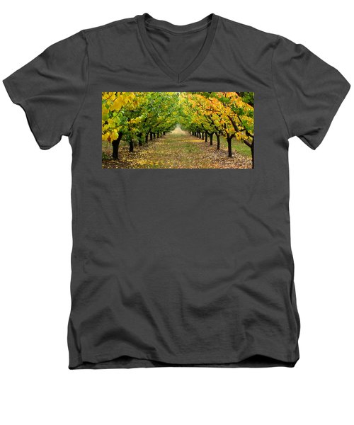 Men's V-Neck T-Shirt featuring the photograph Pear Orchard by Katie Wing Vigil