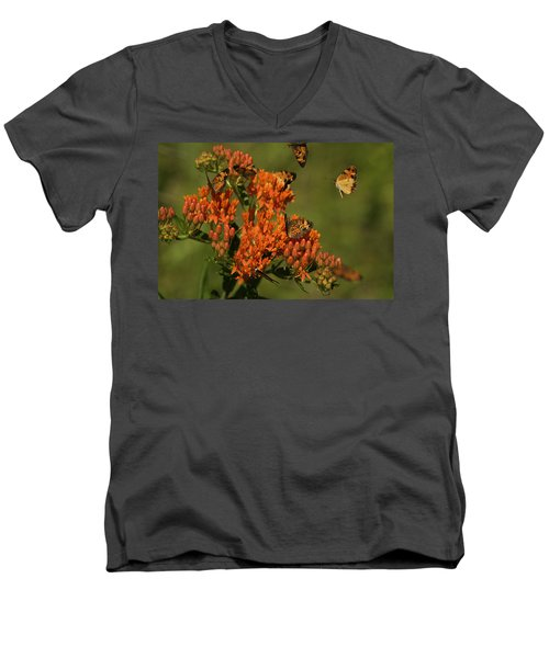 Pearly Crescentpot Butterflies Landing On Butterfly Milkweed Men's V-Neck T-Shirt