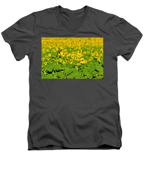 Men's V-Neck T-Shirt featuring the photograph Peeking Above  Sea Of Yellow by Colleen Coccia
