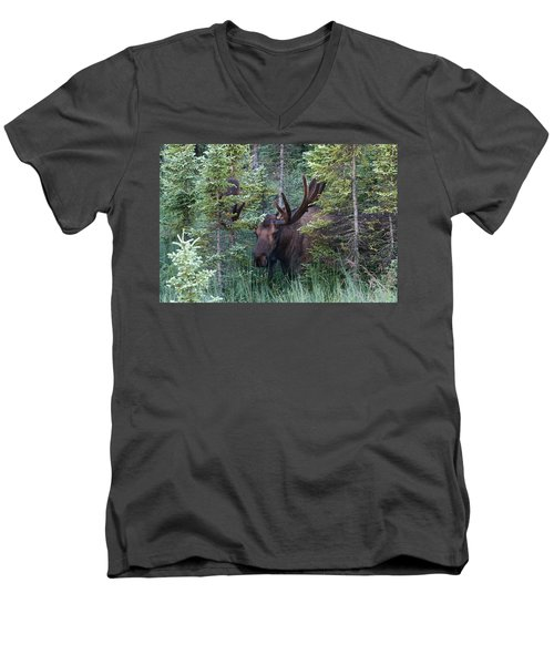 Men's V-Neck T-Shirt featuring the photograph Peeking Through The Spruce by Doug Lloyd