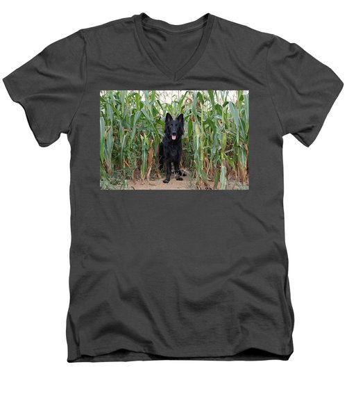 Phoenix In The Cornfield Men's V-Neck T-Shirt