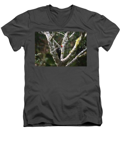 Men's V-Neck T-Shirt featuring the photograph Pileated Woodpecker In Cherry Tree by Kym Backland