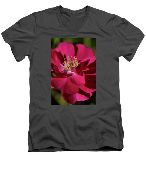 Men's V-Neck T-Shirt featuring the photograph Pink Of Rose by Joy Watson