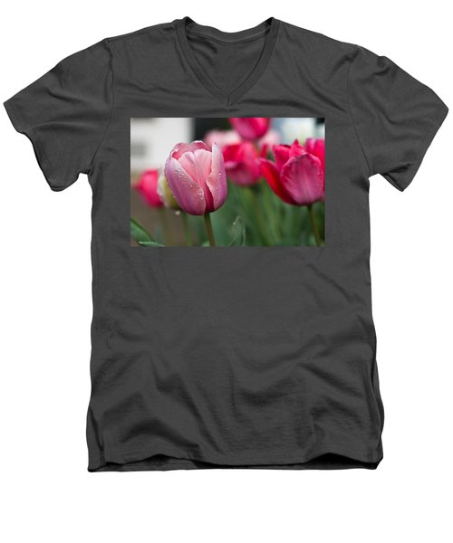 Pink Tulips With Water Drops Men's V-Neck T-Shirt