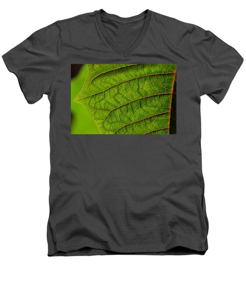 Poinsettia Leaf I Men's V-Neck T-Shirt
