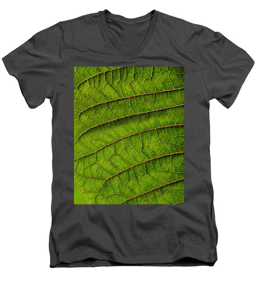 Poinsettia Leaf II Men's V-Neck T-Shirt