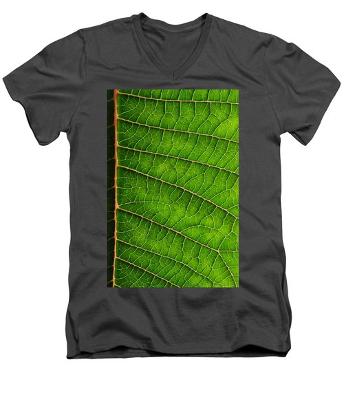 Poinsettia Leaf IIi Men's V-Neck T-Shirt