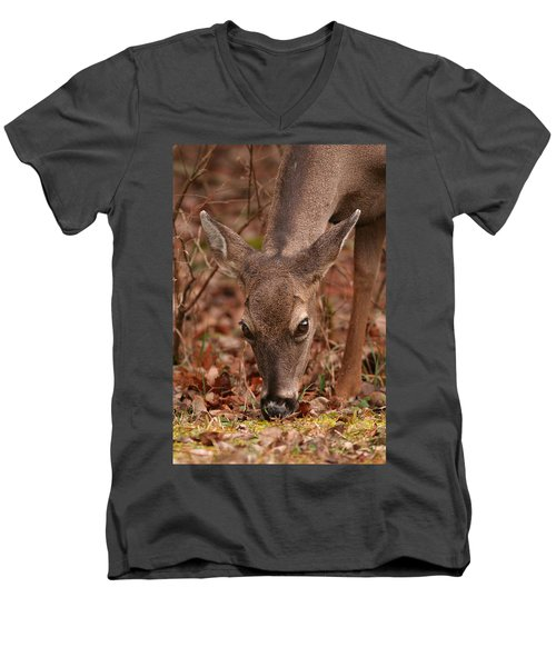 Portrait Of  Browsing Deer Two Men's V-Neck T-Shirt