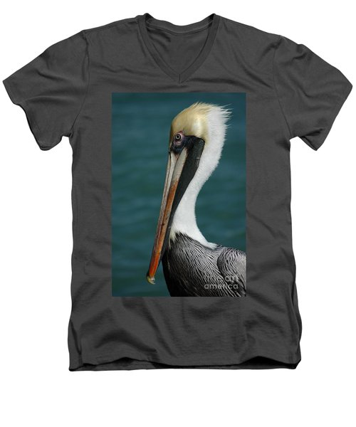 Posing For The Tourists Men's V-Neck T-Shirt by Vivian Christopher
