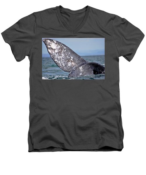 Men's V-Neck T-Shirt featuring the photograph Powerful Fluke by Don Schwartz