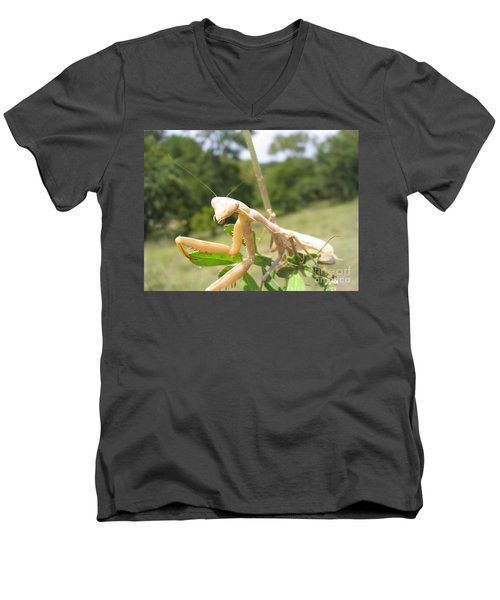 Preying Mantis Men's V-Neck T-Shirt