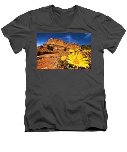 Rainbow Garden Men's V-Neck T-Shirt