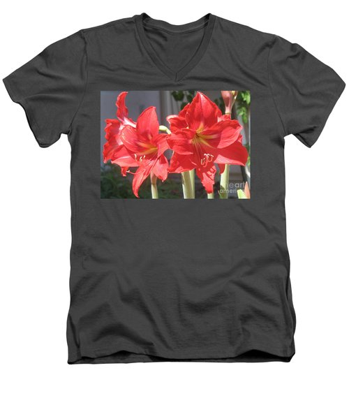 Men's V-Neck T-Shirt featuring the photograph Red Amaryllis by Kume Bryant