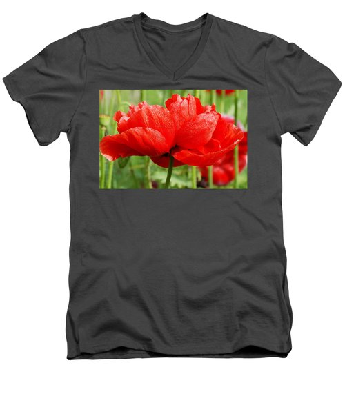 Men's V-Neck T-Shirt featuring the photograph Red And Green by Fotosas Photography