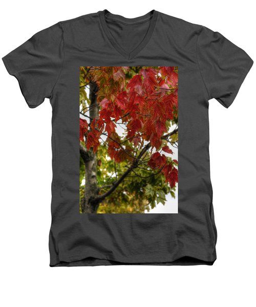 Men's V-Neck T-Shirt featuring the photograph Red And Green Prior X-mas by Michael Frank Jr