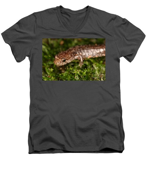 Red-backed Salamander Men's V-Neck T-Shirt by Ted Kinsman