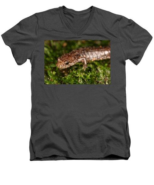 Red-backed Salamander Men's V-Neck T-Shirt by Ted Kinsman