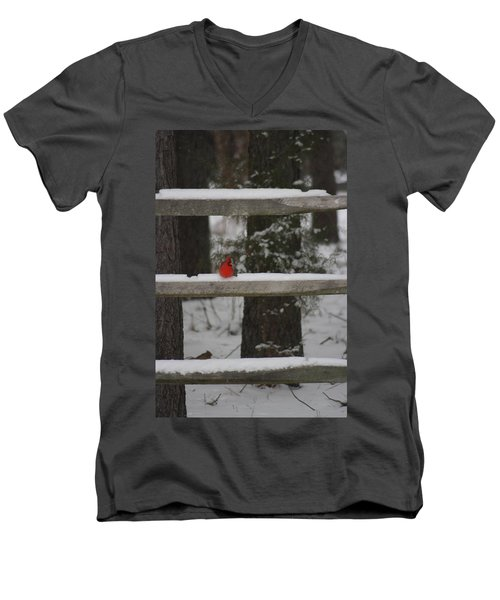 Men's V-Neck T-Shirt featuring the photograph Red Bird by Stacy C Bottoms