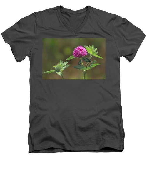 Red Clover Blossom Men's V-Neck T-Shirt