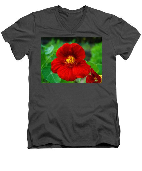 Men's V-Neck T-Shirt featuring the photograph Red Daylily by Bill Barber