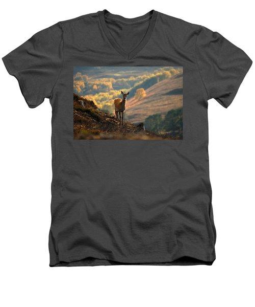 Red Deer Calf Men's V-Neck T-Shirt