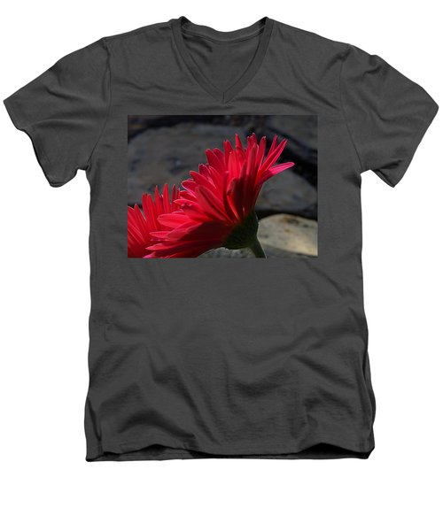 Red English Daisy Men's V-Neck T-Shirt by Joe Schofield