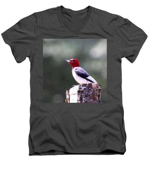 Red-headed Woodpecker - Statue Men's V-Neck T-Shirt