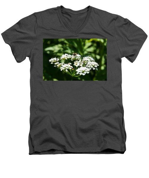 Refractions Men's V-Neck T-Shirt