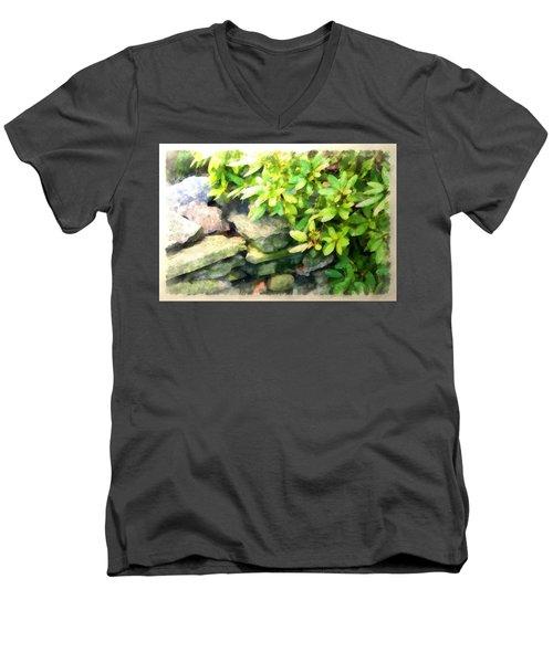 Rhodas And Stones Men's V-Neck T-Shirt