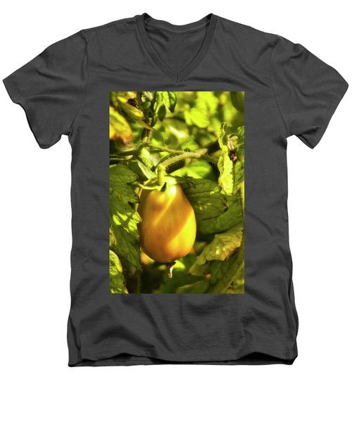 Men's V-Neck T-Shirt featuring the photograph Ripening Roma by Albert Seger