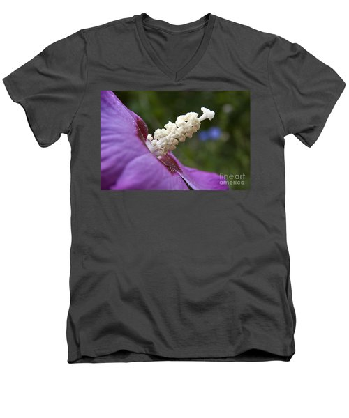 Rose Of Sharon Men's V-Neck T-Shirt by Jeannette Hunt