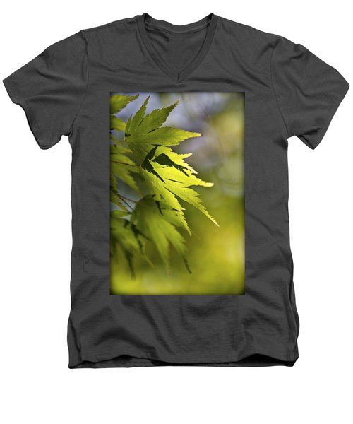 Men's V-Neck T-Shirt featuring the photograph Shades Of Green And Gold. by Clare Bambers