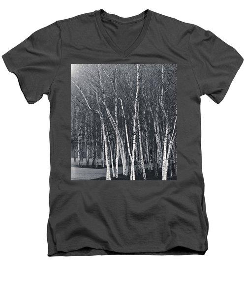 Silver Trees Men's V-Neck T-Shirt