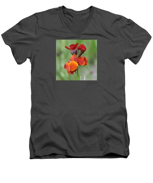 Men's V-Neck T-Shirt featuring the photograph Smooth And Silky by Chris Anderson