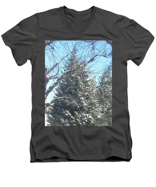 Men's V-Neck T-Shirt featuring the photograph Snow Sprinkled Pine by Pamela Hyde Wilson