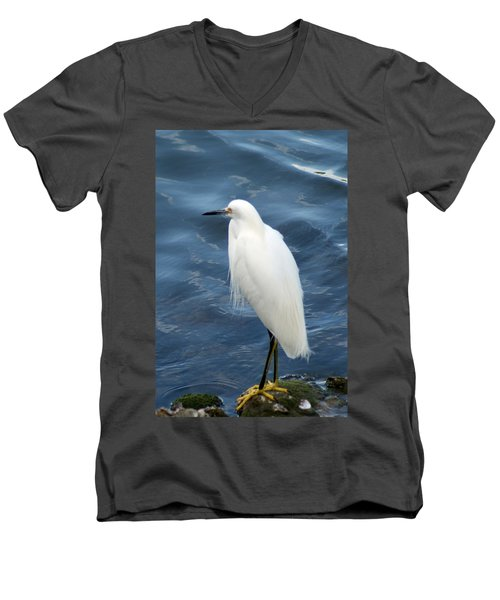 Snowy Egret 1 Men's V-Neck T-Shirt by Joe Faherty